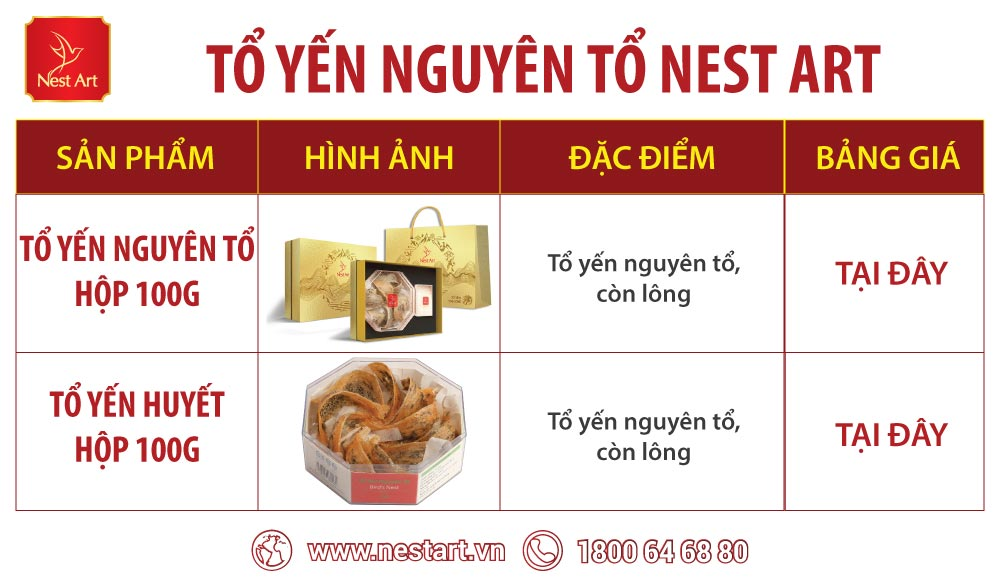 to-yen-nguyen-to